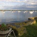 Boats in the Still Harbor